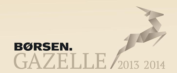energielektrikeren fik Børsen Gazelle i 2013 og 2014